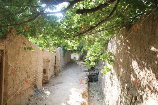 تصویر با کیفیت کوچه باغ قدیمی