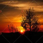 منظره غروب آفتاب Sunset high quality picture