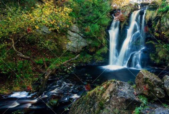 منظره با کیفیت رودخانه ،آبشار و جنگلhigh quality picture Natural River Waterfall Jungle